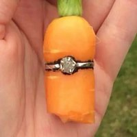 Inspired by Fellow Canadian, Homesteader Proposes With a Carrot-and-Diamond Ring
